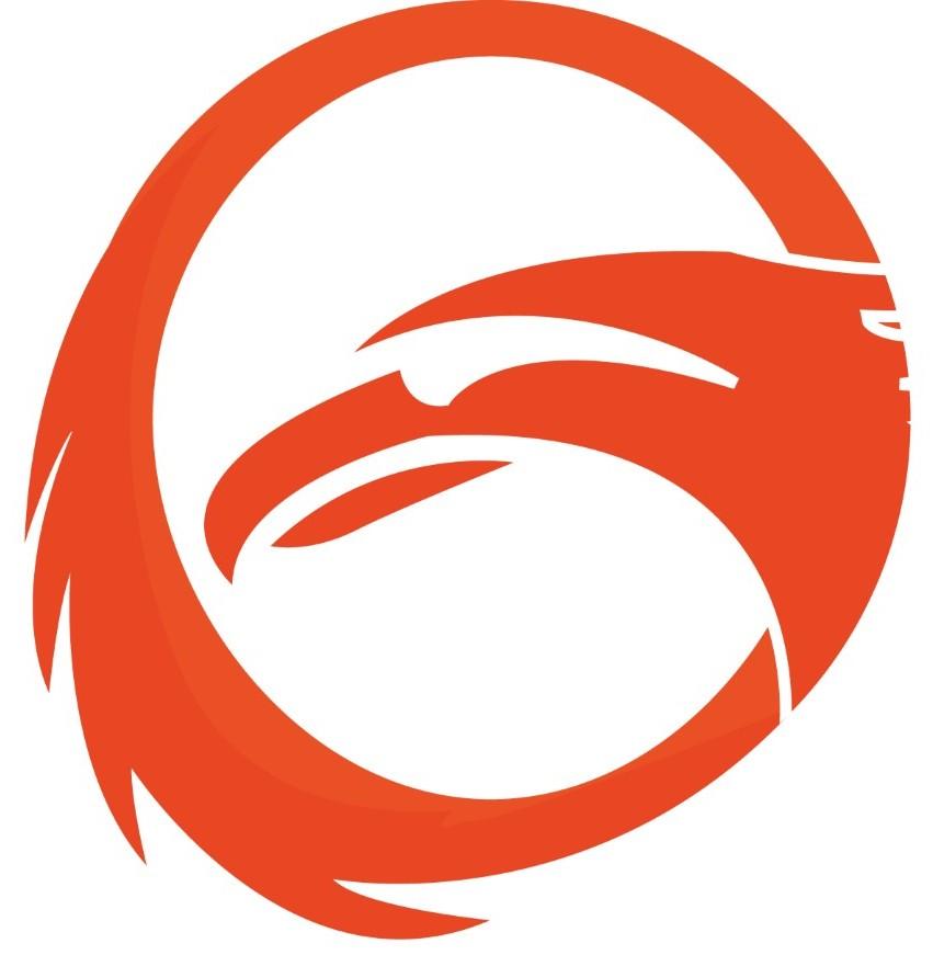 Logo Phoenix Fitness icon